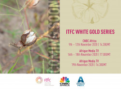 FR_ITFC-White-Gold-Series-Press-Release-Visual.jpg