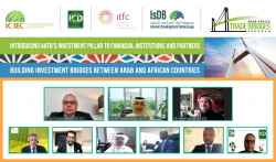 Arab-Africa Trade Bridges Program Investment Pillar Webinar- Event Photo.jpg